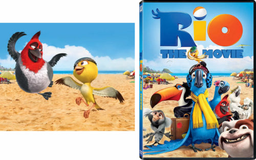 Pedro, the bird in the cartoon movie Rio is a red-crested cardinal. - Red-crested Cardinals - Curiosity Trek - Hawaii