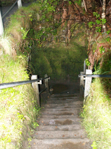 Stairs into Nāhuku, the Thurston Lava Tube - Curiosity Trek - Hawaii