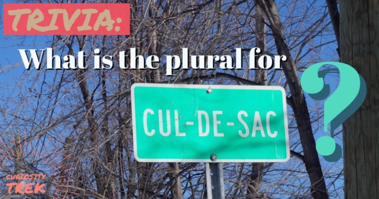 """What is the plural for """"cul-de-sac""""?"""