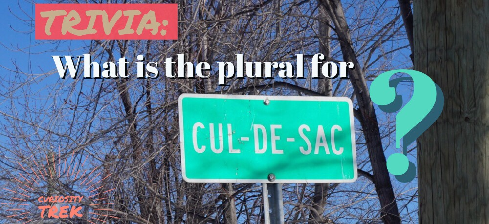 "What is the plural for ""cul-de-sac""?"